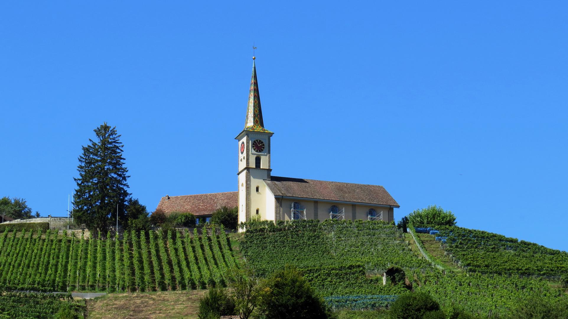 Kirche über Rebberg