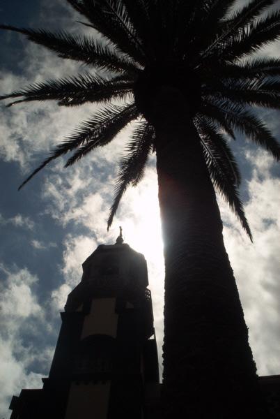 Kirche und Palme im schwachen Sonnenlicht