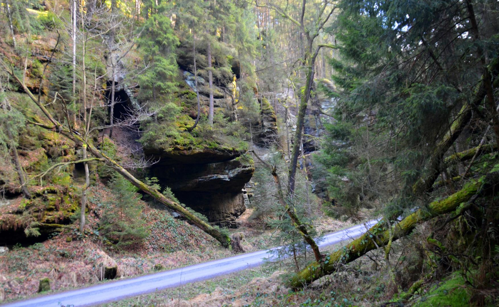 Kirnitzschtal (1)