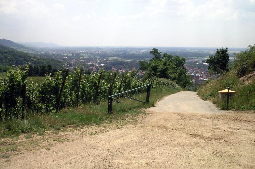 Kirschberghäusel über Bensheim