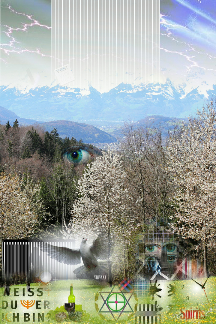 """ Kirschblüten "" in Fraxern"