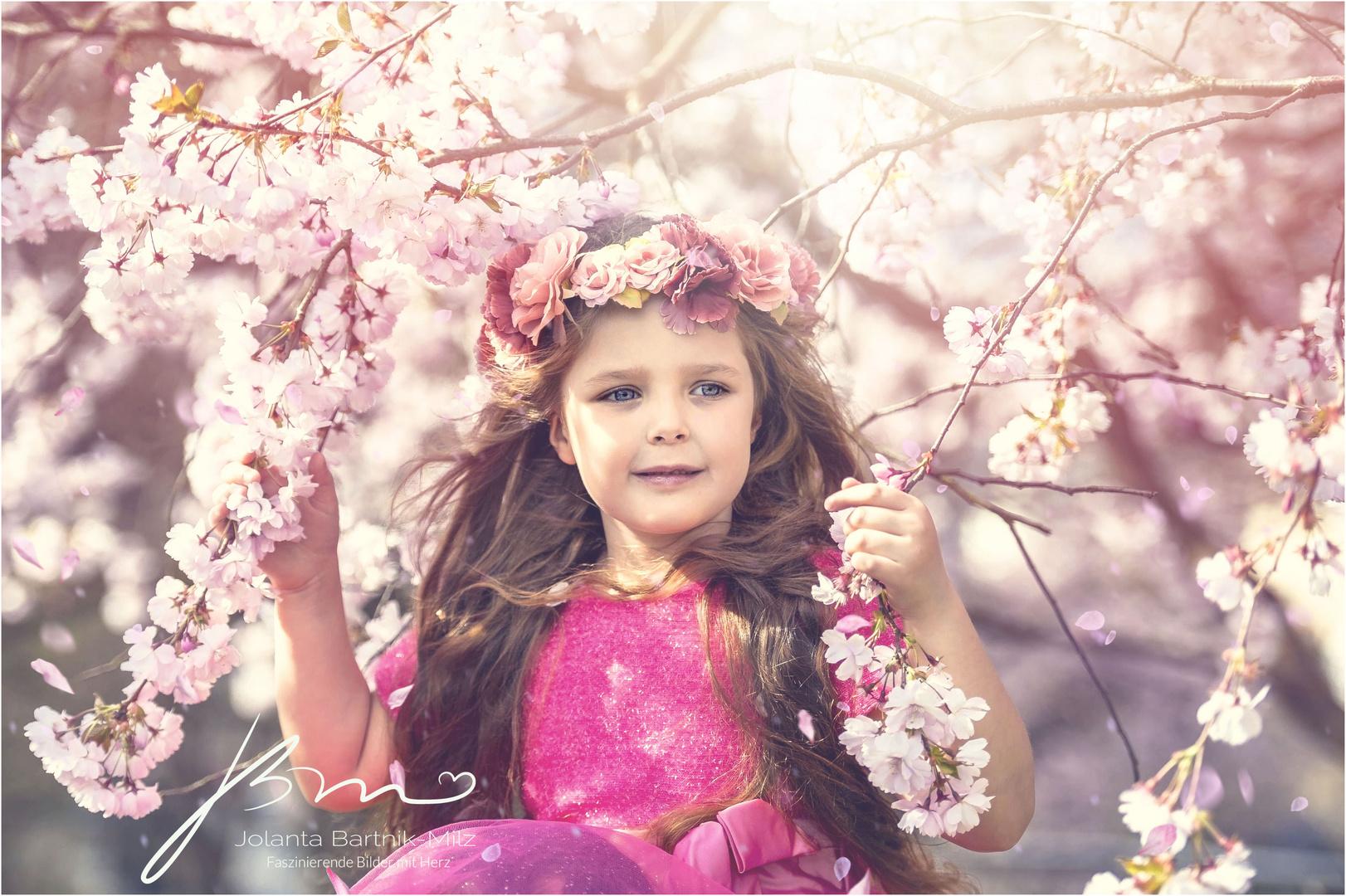 Kirschblütenprinzessin