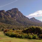 Kirstenbosch Blick