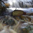 Kirstenbosch stream, Cape Town