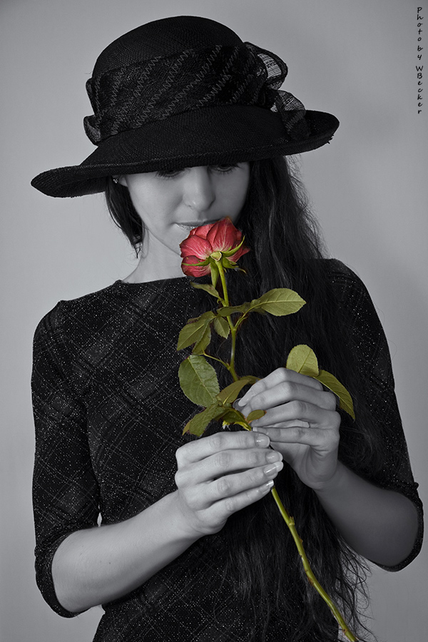 Kiss by a Rose ...
