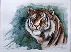 ...kiss me tiger