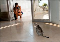 Kitty & Cat