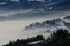 Klarer Blick - trotz Nebel