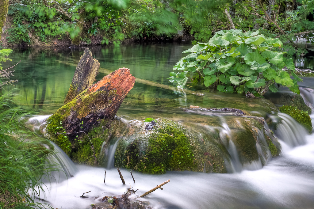 klares Wasser VII