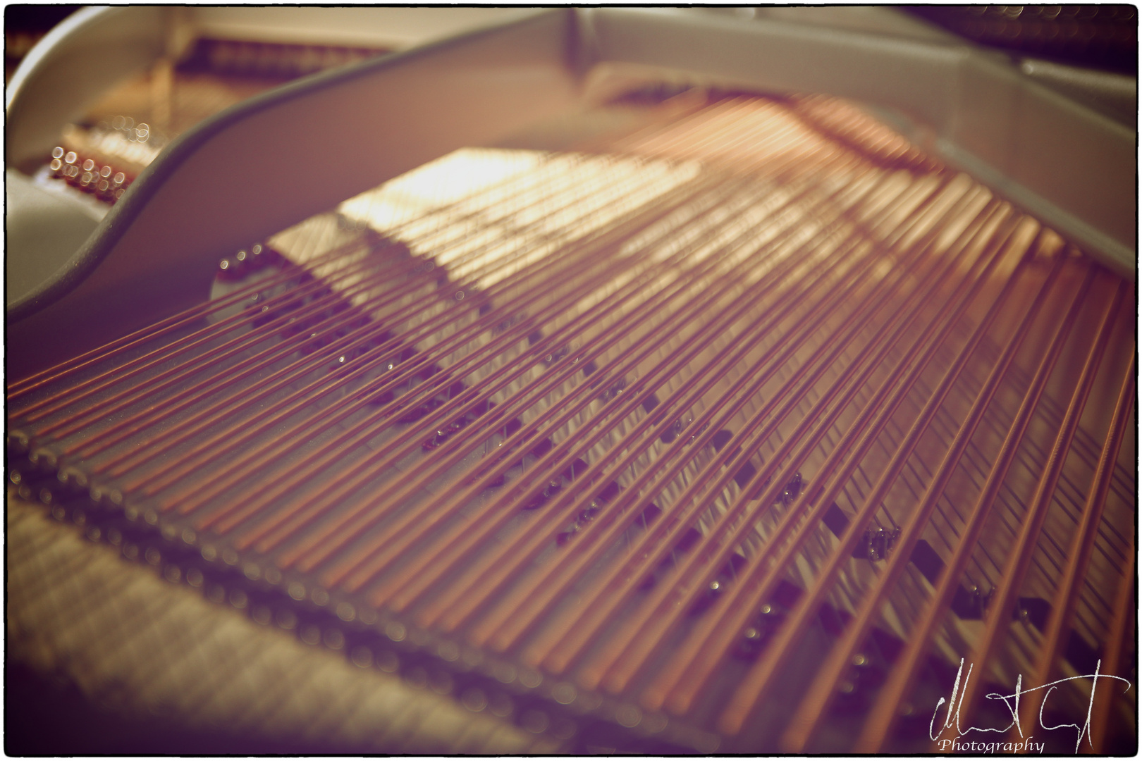 Klaviersaiten