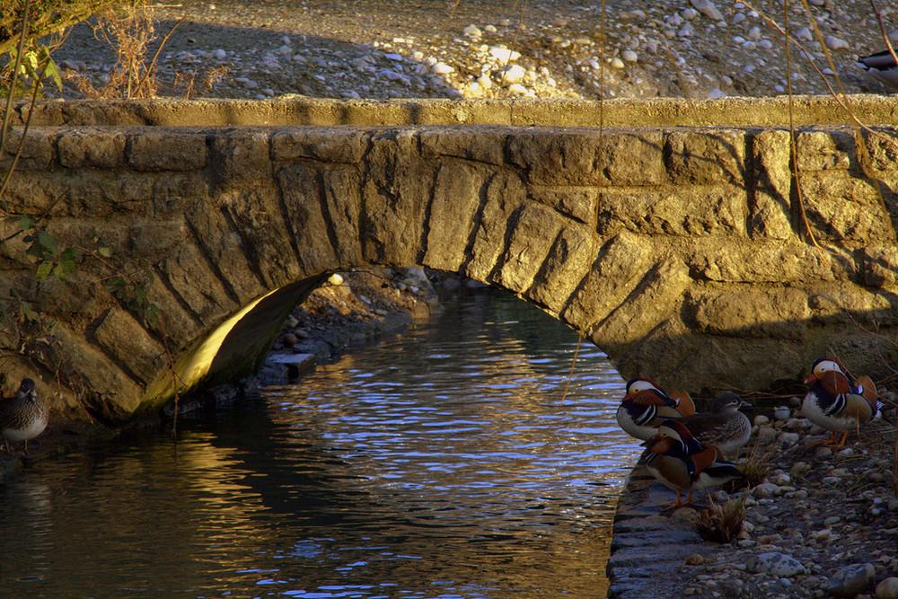 kleine Brücke
