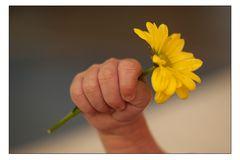 kleine finger mit ´Blumenstrauß´