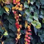 kleine Herbstgirlanden ....
