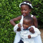 Kleine Hochzeitsgäste. Südafrika