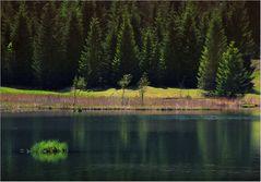 Kleine Insel im See