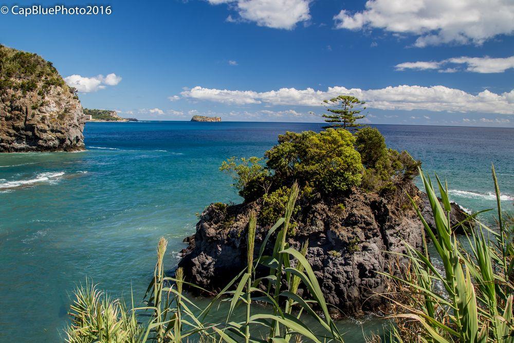 Kleine Insel in der Caloura Bucht hinter dem Schilf