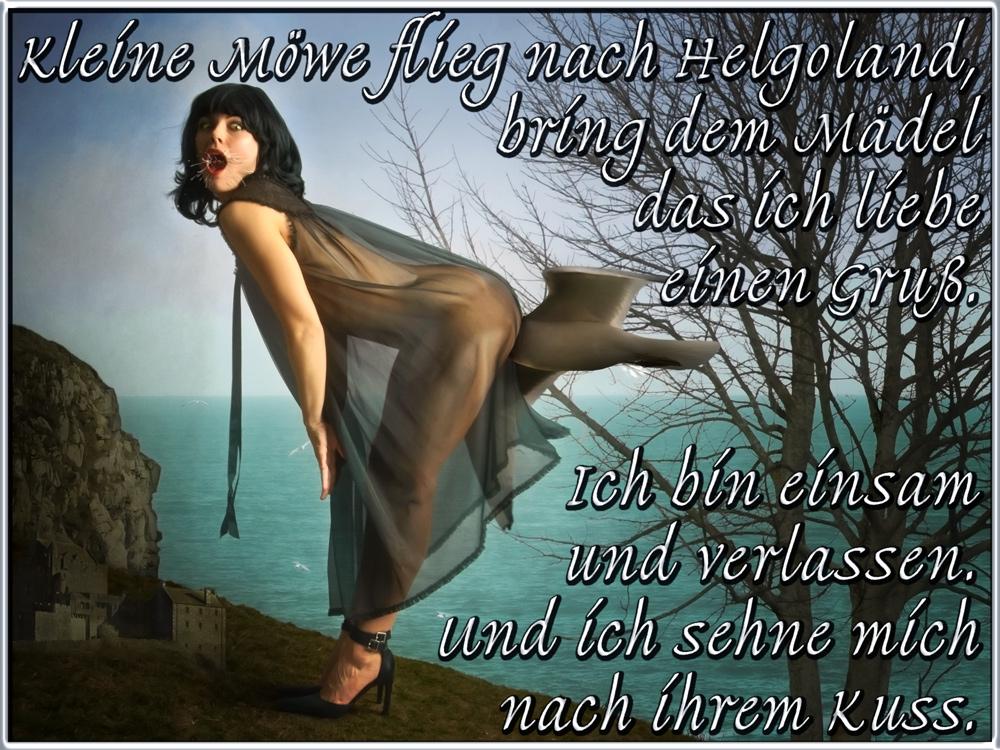 >>> Kleine Möwe flieg nach Helgoland, bring dem Mädel das ich liebe einen Gruß.