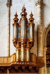 - Kleine Orgel (St. Laurens) -