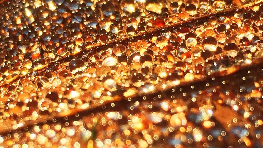 Kleine Perlen