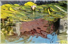Kleine Teichspiegelung