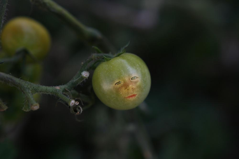 Kleine Tomate