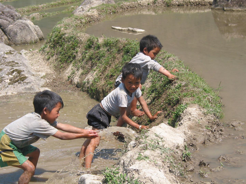 kleine vietnamesische Reisbauern