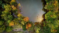 Kleiner Angelweiher im Herbstwald
