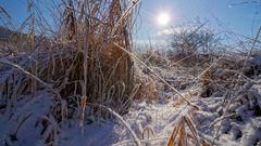 kleiner Bach im Winter, 2 (arroyo en invierno, 2)