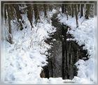 Kleiner Bach im Winter