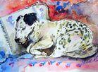 Kleiner Hund - schläft selig+süß