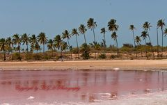 Kleiner Lac rosé