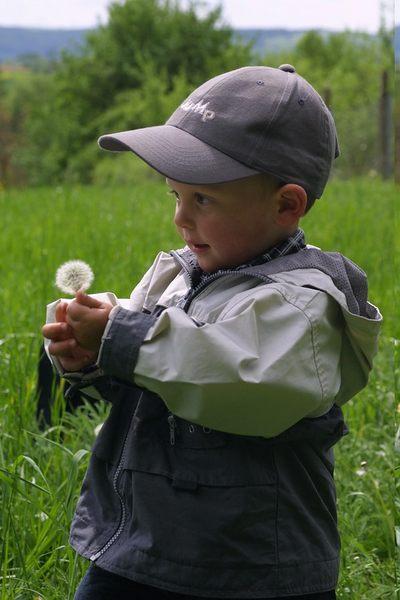 Kleiner Mann mit Pusteblume