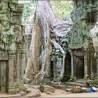 kleiner Mensch-monumentale Tempel-grandiose Natur