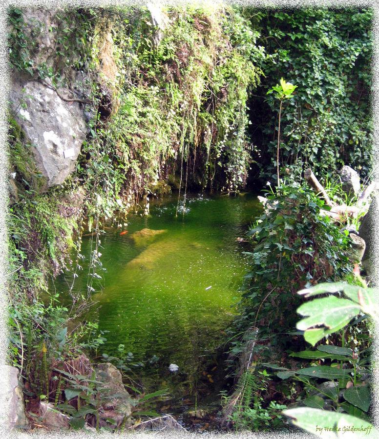 kleiner Teich im Kloster Lluc