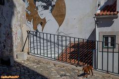 Kleiner Wächter der Alfama in Lisboa