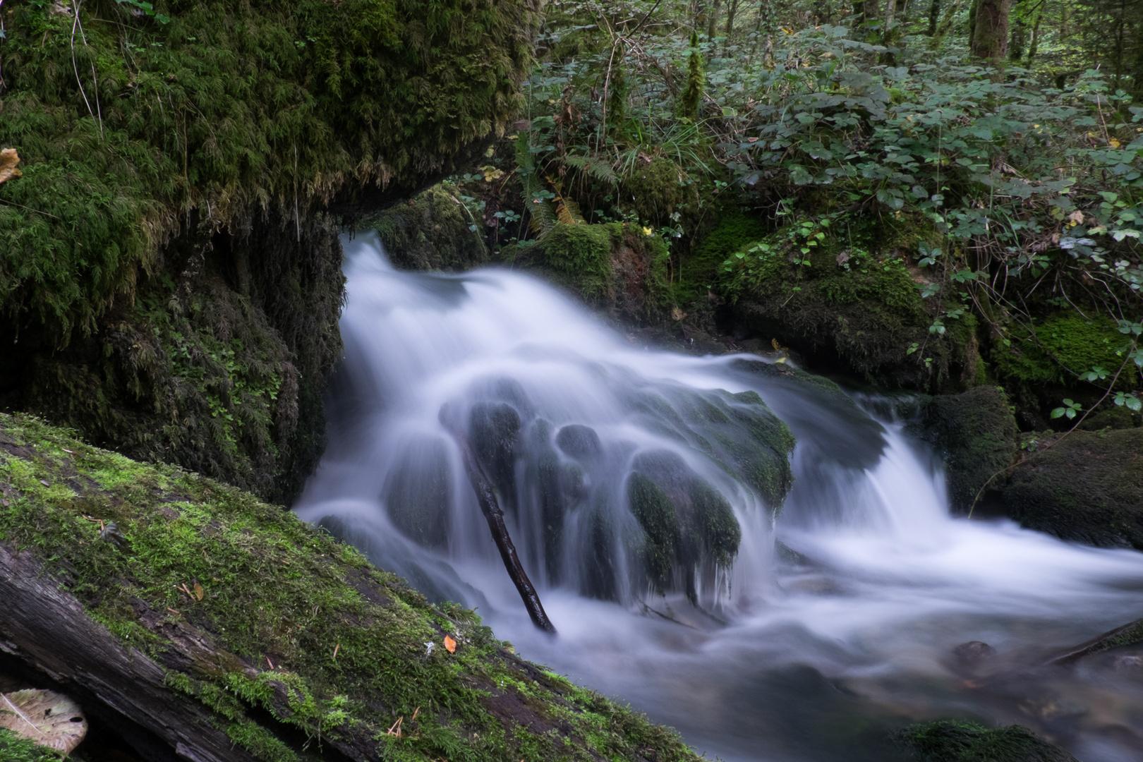 Kleiner Wald-Wasserfall