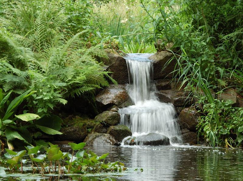 Kleiner Wasserfall Bontanischer Garten Foto Bild Landschaft