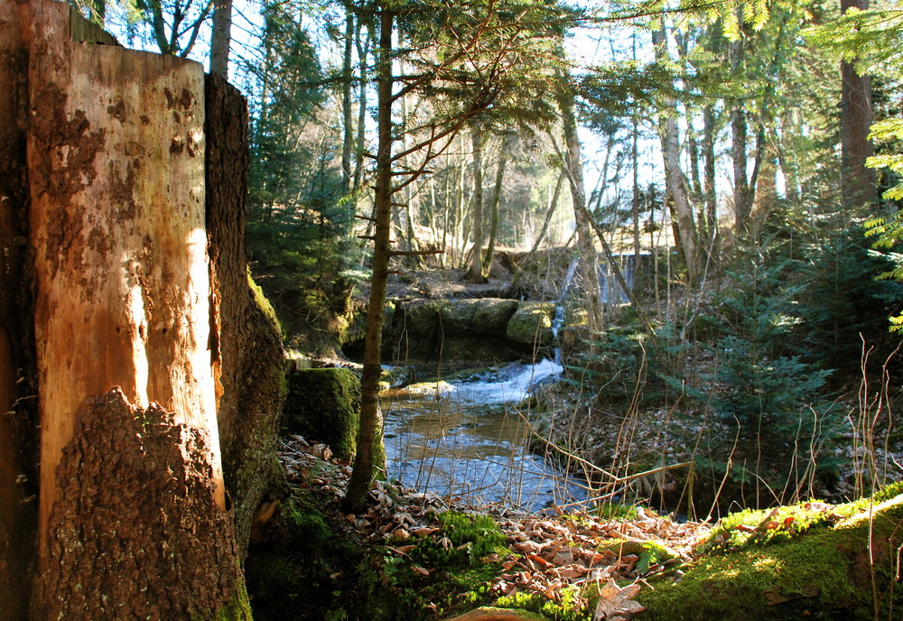 Kleiner Wasserfall in Scheidegg