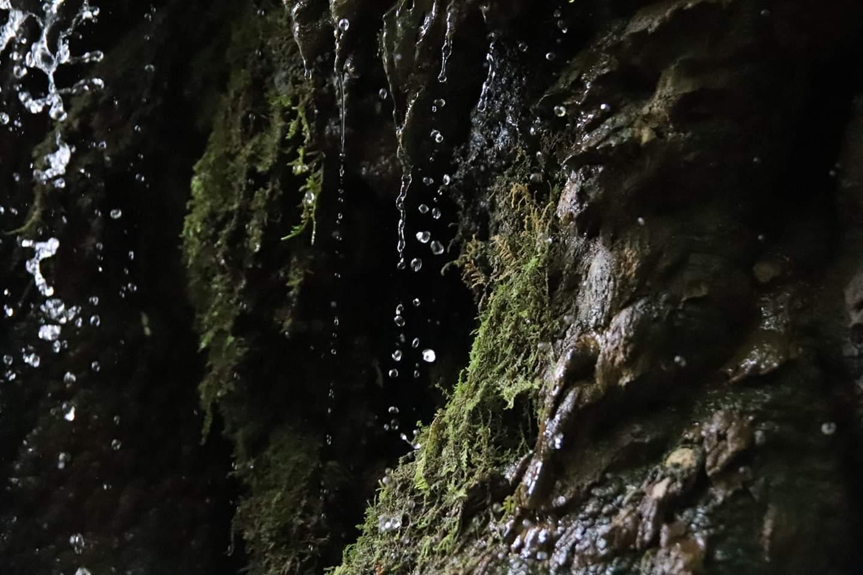 Kleiner Wasserfall mit Tiermotiv
