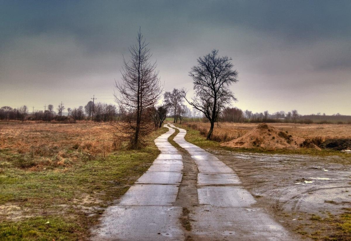 kleiner Weg in der Pampa