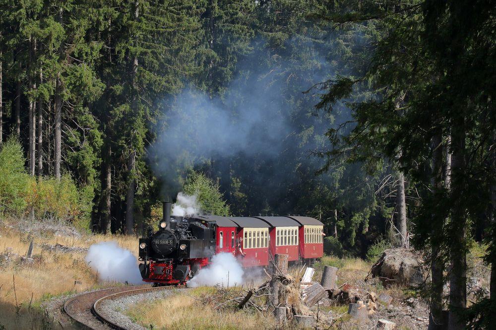 Kleiner Zug . Große Freude