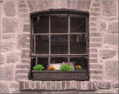 Kleines Fenster CK