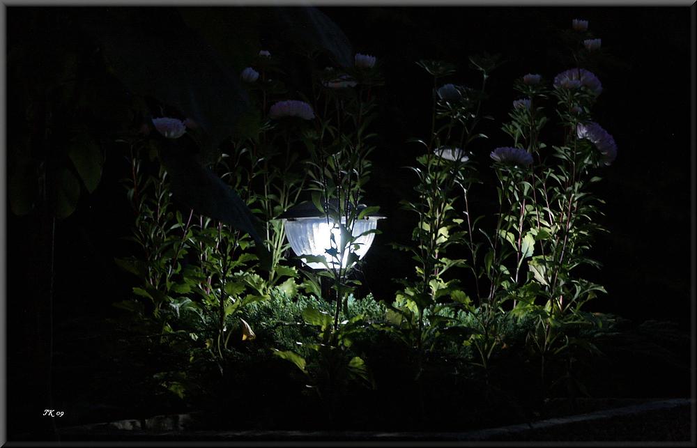 kleines Gartenlicht