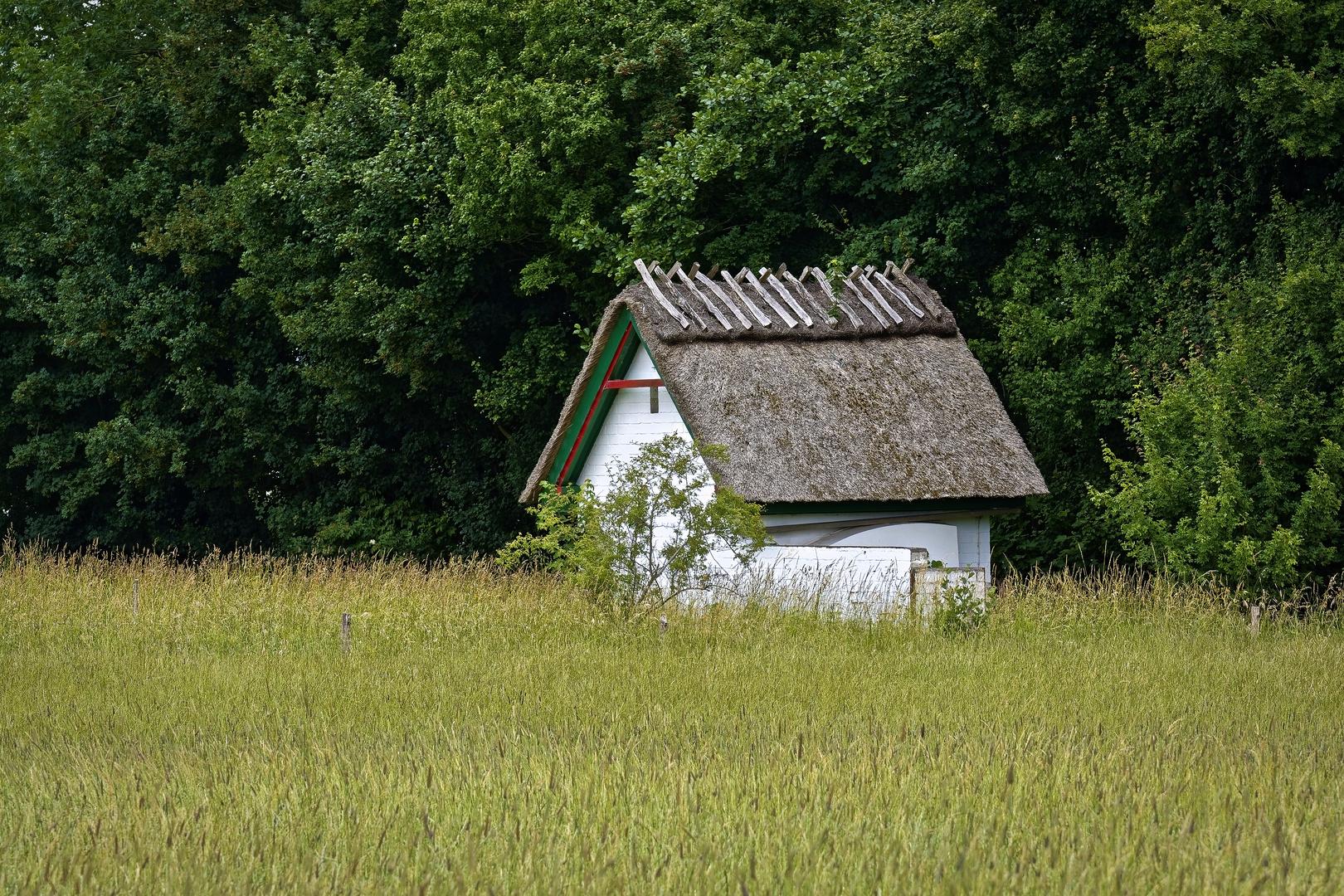 Kleines Haus Auf Holnis Foto Bild Architektur