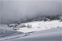 Kleines Schwarzwaldidyll