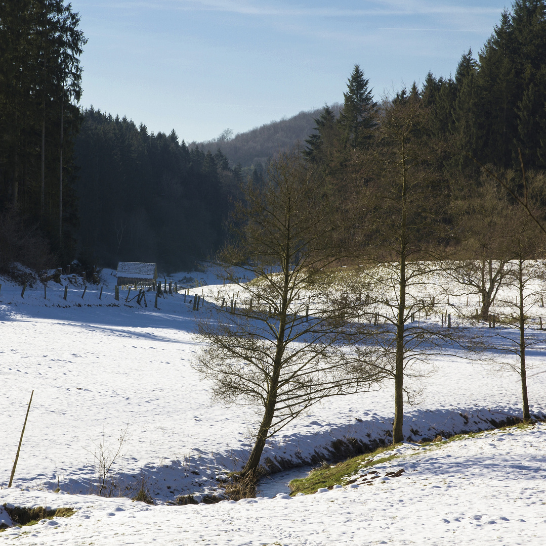 Kleines Tal mit Hütte