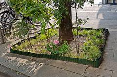 Kleingartenanlage zum Blümchentach