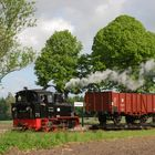 Klenzenhof, 99 4511