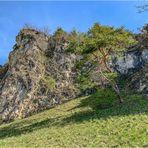 Kletterpark Schönhofen (II)