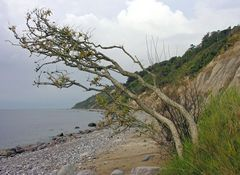 Kliffküste